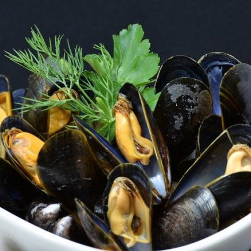 Spanish-Calamari-recipes