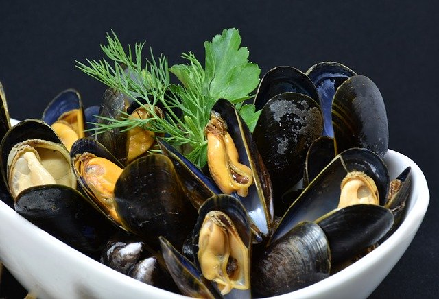 steamed-Spanish-mussels
