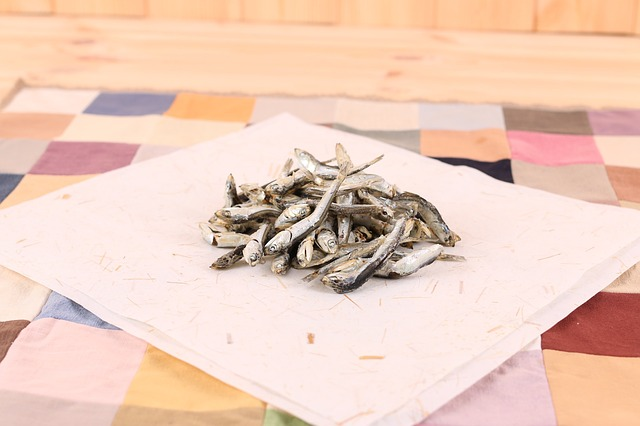 What-are-anchovies