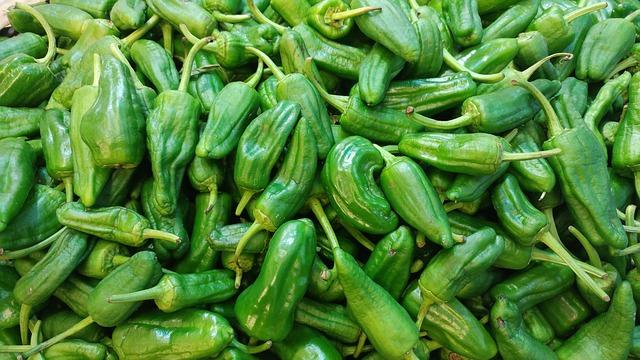 Spanish-vegetarian-food-list